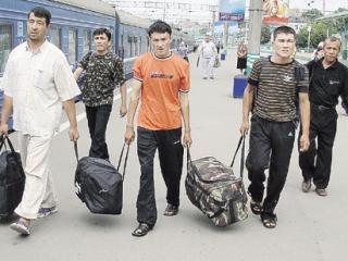 Кыргызстанцев консультируют по открытию бизнеса