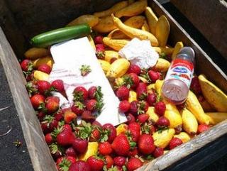 В Европе выкидывают пятую часть пригодных к еде продуктов