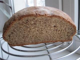 Морозостойкий хлебный злак вывели новосибирские агрономы