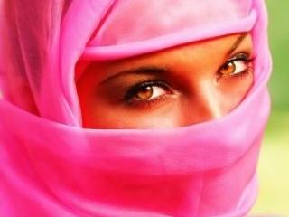 В Бельгии 23 июля вступил в силу закон о запрете ношения паранджи и никаба в общественных местах