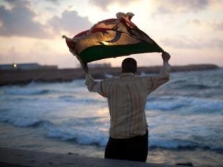 Германия даст ливийским повстанцам кредит в 100 млн евро