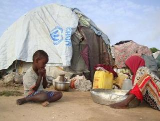 10 миллионам пострадавших от засухи грозит голодная смерть