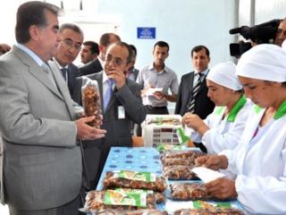 Новое в миграционных процессах России и Таджикистана