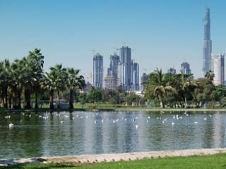 Дубай развивает бюджетный туризм
