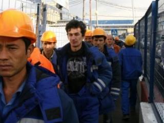 30% трудовых мигрантов не знают русский язык