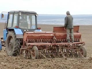 Выделят ли земли таджикским фермерам в России?