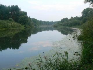 Метод Пророка поможет избежать экологической катастрофы
