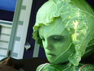 Главным аргументом для включения вегетаранства в список психических заболеваний стал случай в испанском городе Малага