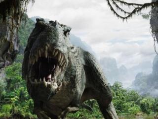 Ученые обнаружили в Чечне яйца динозавров
