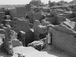 Мохши – новая Троя  исламской  цивилизации