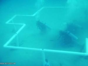 В Саудовской Аравии дайверы построили подводную мечеть
