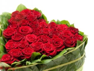 Заказ букетов заказать цветы цветы для декорации платья купить