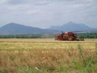 В Ставропольском крае полиция предотвратила драку фермеров