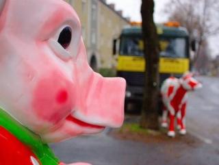 В Швеции появилась свинина, стилизованная под говядину