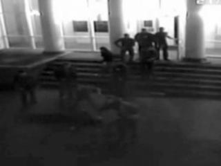 Боксера-убийцу поместили под домашний арест
