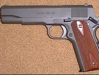 Депутат от ЛДПР пронес в Госдуму пистолет