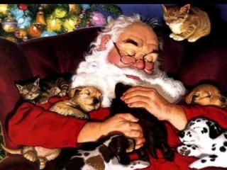 Санта-Клаус завоевывает Эмираты