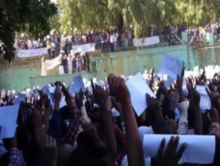 В Эфиопии мусульмане вышли на улицы