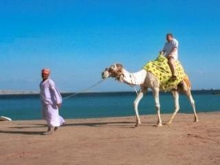 Россиянам в Египте советуют не покидать курорты