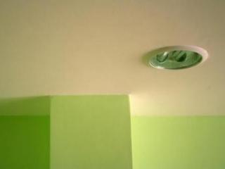Rongeur dans faux plafond