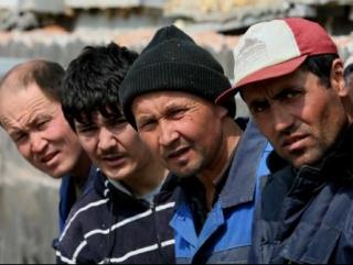 РПЦ создает канал для мигрантов