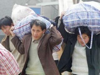 Число преступлений, совершенных мигрантами, сокращается