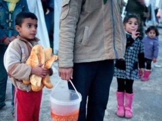 Число сирийских беженцев достигло миллиона
