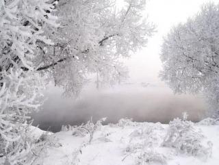 Онищенко: пить снег можно, а есть — нельзя