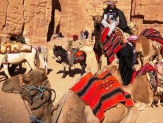 ЦРУ вербует бедуинов для борьбы с Асадом