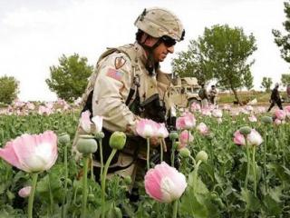 Присутствие США негативно отражается на криминогенной обстановке