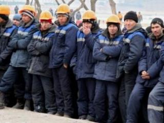 Депутаты Госдумы предлагают ввести мораторий на трудоустройство мигрантов до 2018 года