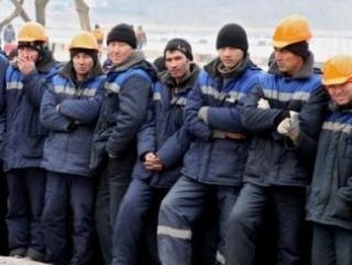 Предприниматели подали в мэрию заявки на привлечение 97080 иностранных работников