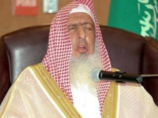 Муфтий Саудовской Аравии критикует правозащитные организации