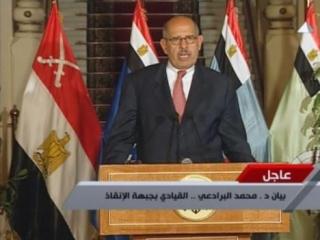 Режим Египта обвиняет Барадеи в шпионаже в пользу США