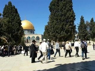 Мусульмане не позволили  экстремистам совершить обряды в Аль-Акса