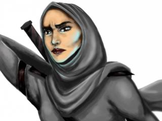 Ниндзя в хиджабе бросила вызов Femen