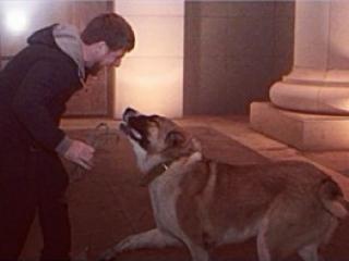 Рамзан Кадыров со своим Тарзаном