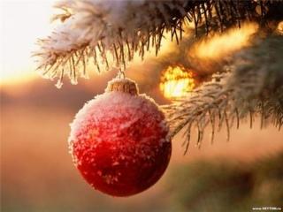 Новый год можно интерпретировать по-разному, полагает мусульманский деятель