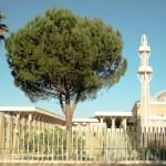 Мечеть в Риме, Италия