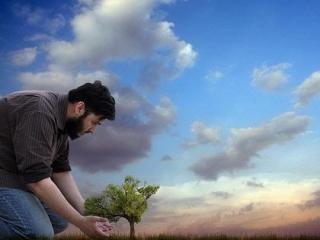 Ислам и экология
