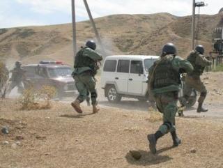 В Киргизии обезврежены сирийские боевики — спецслужбы