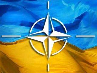 Украинские депутаты-националисты  просятся в НАТО