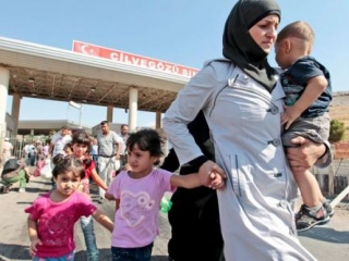 Сирийцы и палестинцы становятся самыми многочисленными беженцами