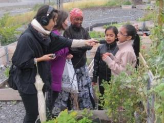 В столице Норвегии откроется первая мусульманская школа