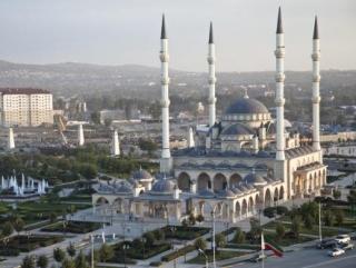 День мира отметили в Чечне