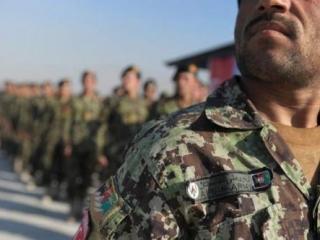 Афганские силовики убили, как минимум, 41 талиба