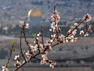 Через Москву пройдет Всемирный марш на Иерусалим
