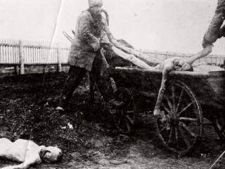 Был ли голод в татаро-башкирских районах голодомором