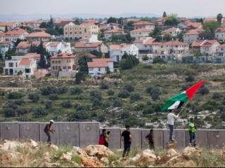 Миллион человек требуют свернуть финансирование захвата Палестины