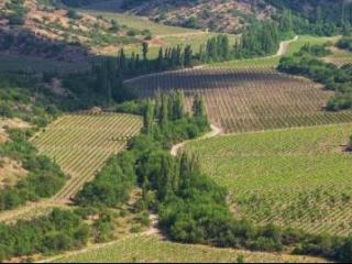 Качество крымских земель оценит новая служба